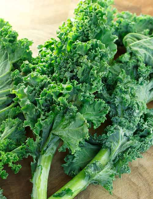 Foods For A Healthy Kidney - Kale