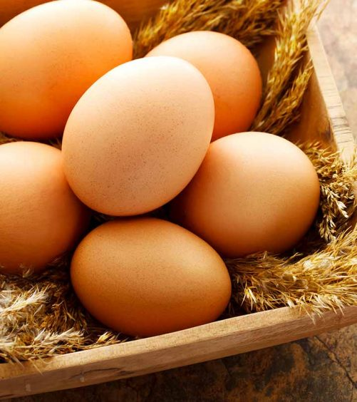 Egg Diet Plan – What Is It And What Are Its Pros And Cons?