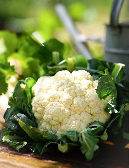 Foods For A Healthy Kidney - Cauliflower