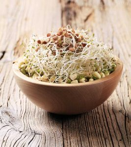 Sprouts 7 Health Benefits + Nutrition Facts