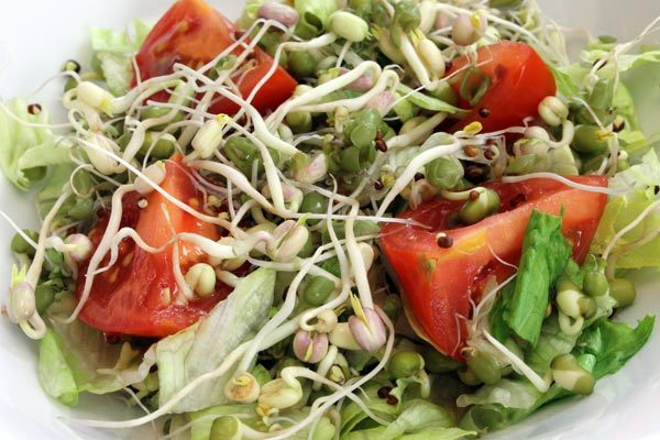 Benefits Of Sprouts