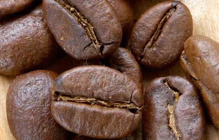 cacao-nibs-theobroma-cacao1