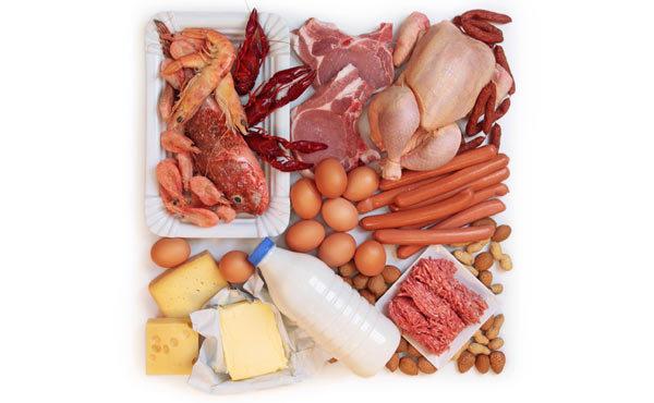protein açısından zengin gıda