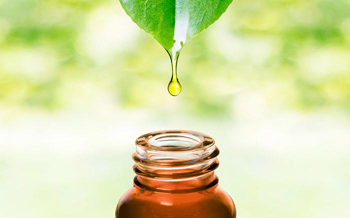1. Tea Tree Oil For Ingrown Hair