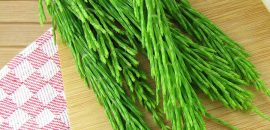 19 Amazing Benefits Of Horsetail For Skin, Hair, And Health