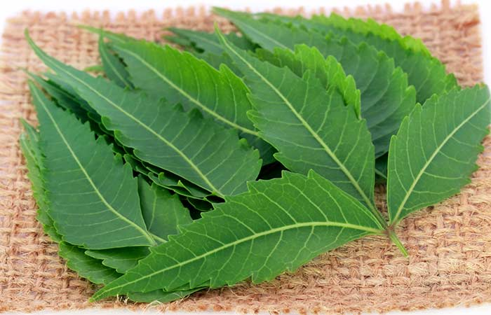 neem for vaginal odor