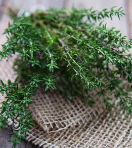 58 Amazing Benefits And Uses Of Thyme (Ajwain ke Phool) For Skin, Hair And Health