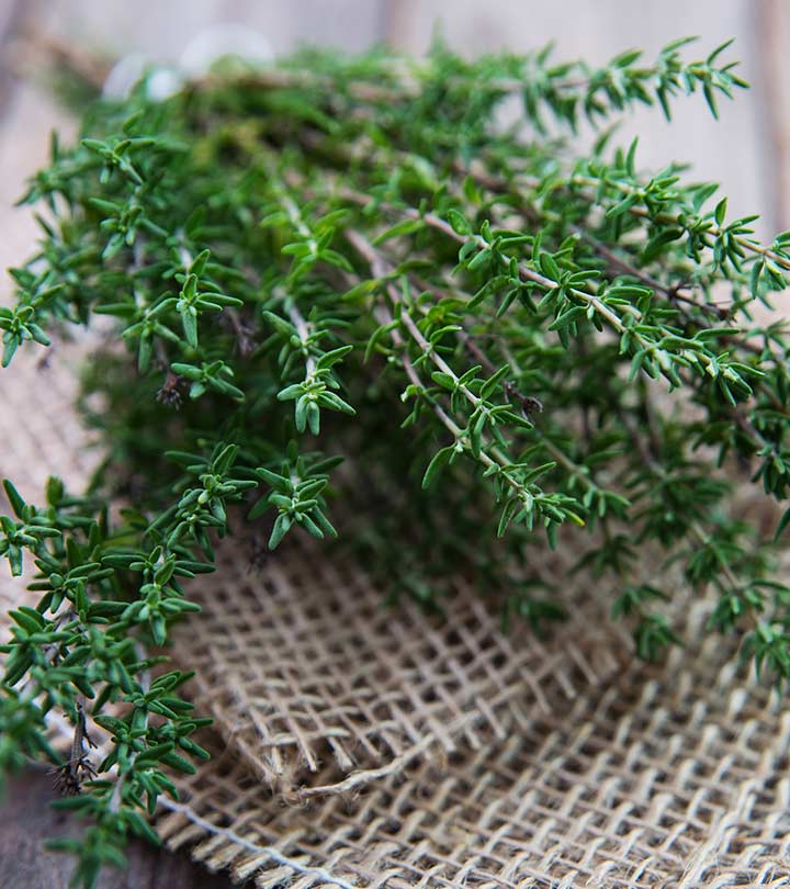 14 Amazing Benefits Of Thyme For Skin, Hair, And Health