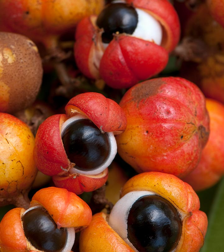 10 Amazing Benefits Of Guarana For Skin, Hair And Health