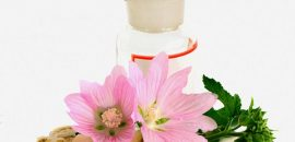 13 Amazing Benefits Of Marsh Mallow (Althaea Officinalis) For Skin, Hair And Health
