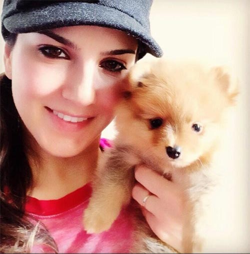 8. Animal Lover Sunny Leone Without Makeup