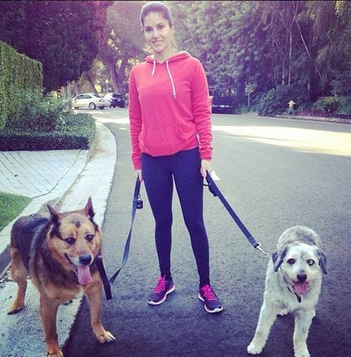 9. Sunny Leone With Her Pets