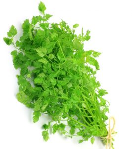 13 Amazing Benefits And Uses Of Chervil For Skin, Hair And Health