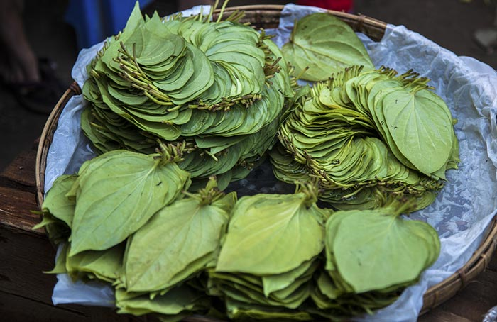 Betel Leaves for vaginal odor