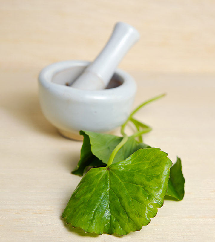 Gotu Kola:  9 Powerful Benefits + Side Effects + Dosing