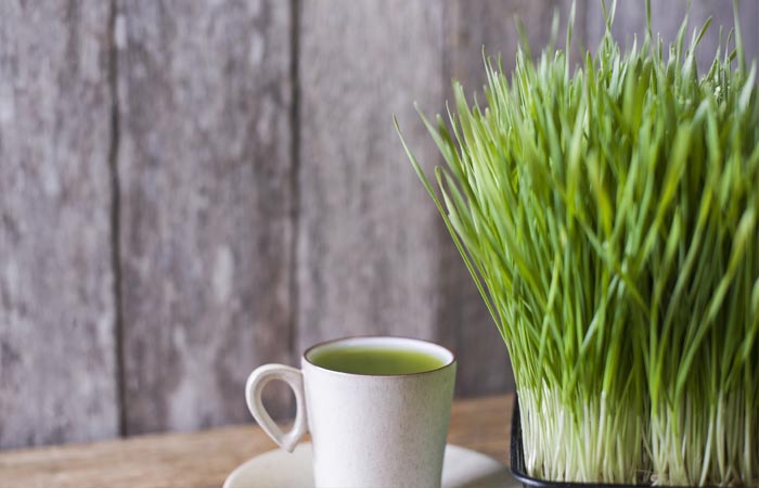 Juices For Weight Loss - Wheatgrass Tone-Up