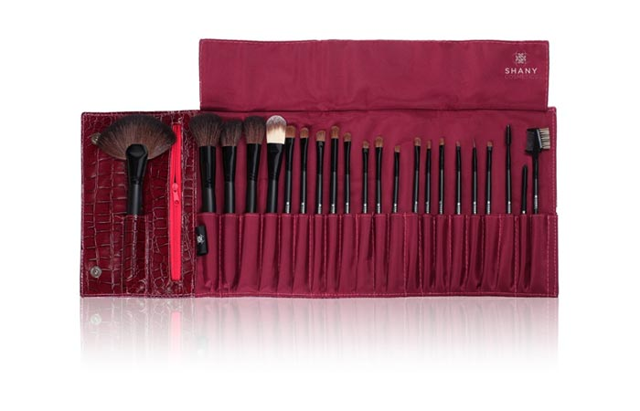 Best Professional Makeup Brushes - 4. Shany NY Collection