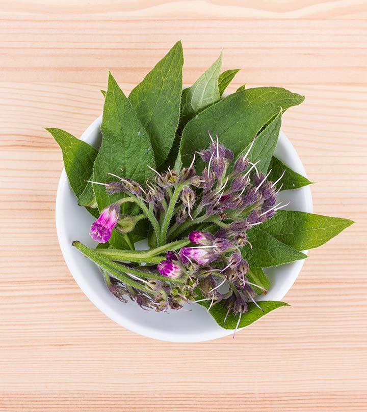 What Is Comfrey? What Are Its Uses And Side Effects?
