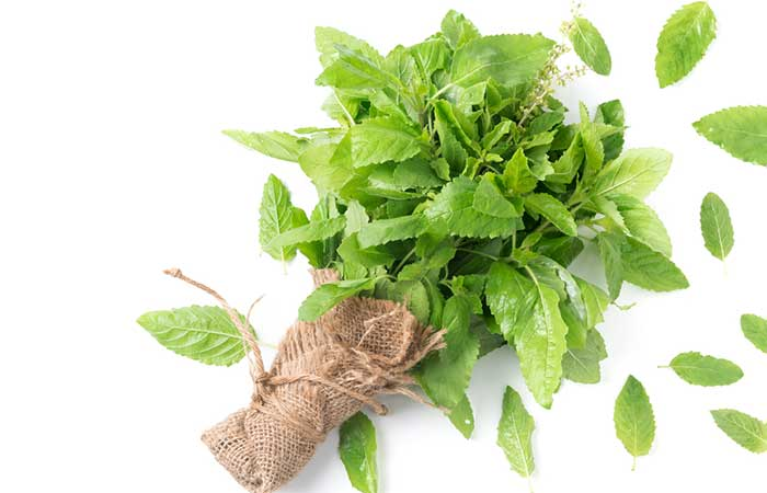 Home Remedies To Treat Food Poisoning - Basil With Honey