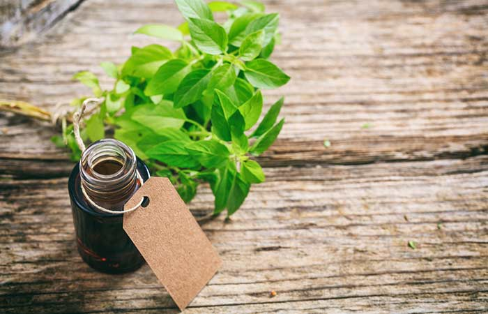 Lower Your Cholesterol Levels - Holy Basil Essential Oil