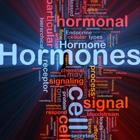 hormonal imbalance test
