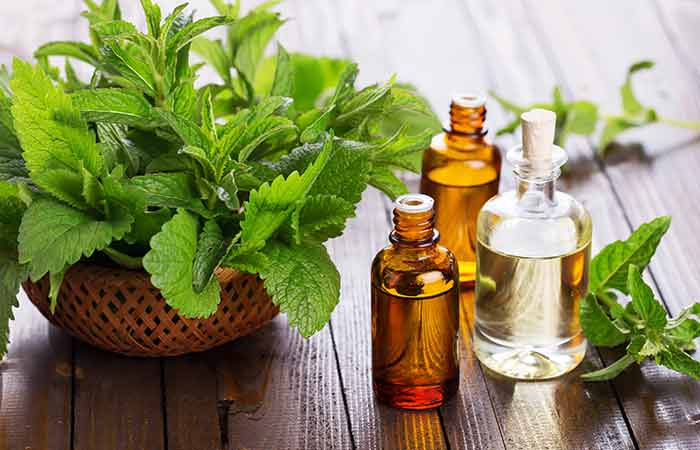 Home Remedies For Phlegm (Mucus) - Peppermint Oil