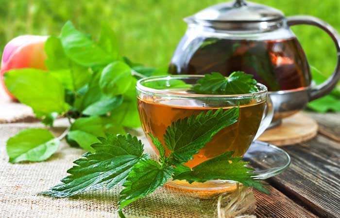 Home Remedies For Dust Allergy - Nettle Leaf Tea