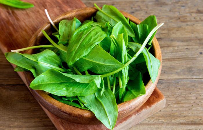 20.-Sorrel-Leaves-(Spinach-Dock)