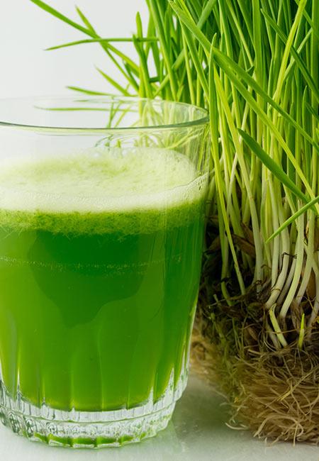 7.-Wheatgrass-Juice