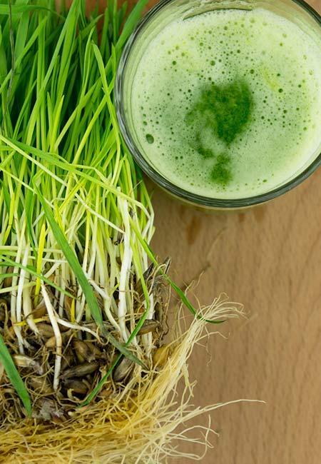 7. Wheatgrass Juice