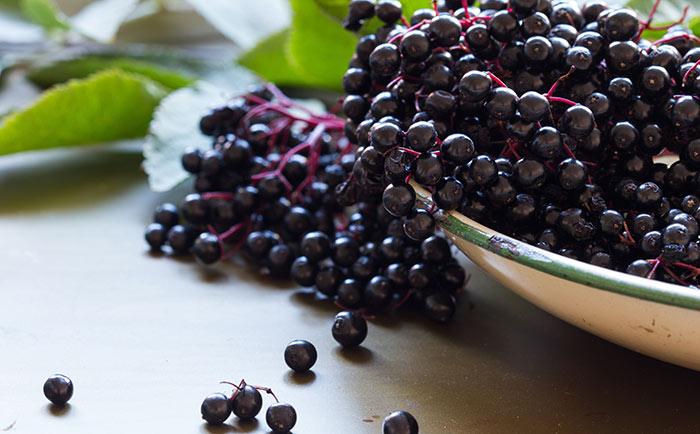 9. Elderberry For Cough