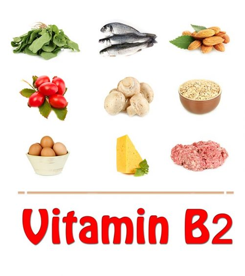 Vitamin-B2-Rich-Foods-You-Should-Include-In-Your-Diet