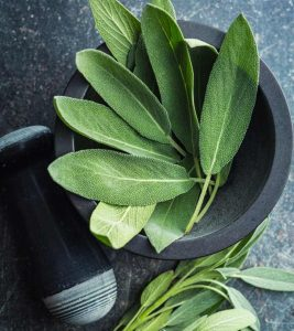 8 Surprising Benefits & Uses Of Sage (Kamarkas) For Skin, Hair, And Health