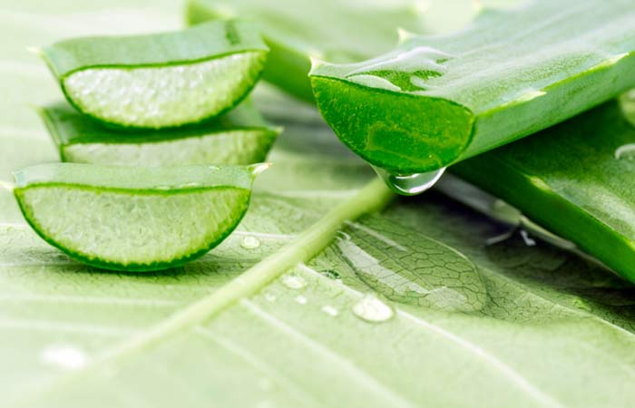 (c)-Aloe-Vera-Gel-For-Skin-Tightening