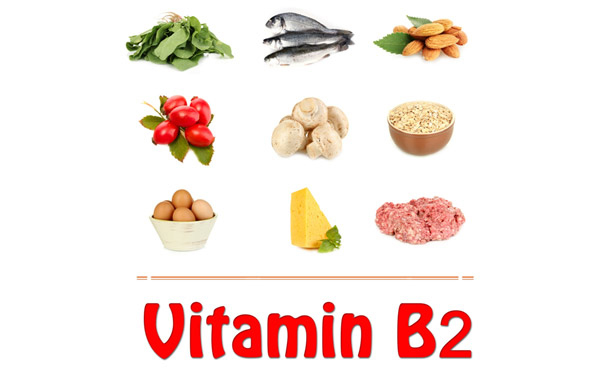 The Benefits of Vitamin B2 for Skin, Hair and Nail -  If you are looking for a holistic approach to skin care, having a diet rich in Vitamin B2 is the best way. Let's take a look at the benefits of Vitamin B2, particularly for your skin and hair.