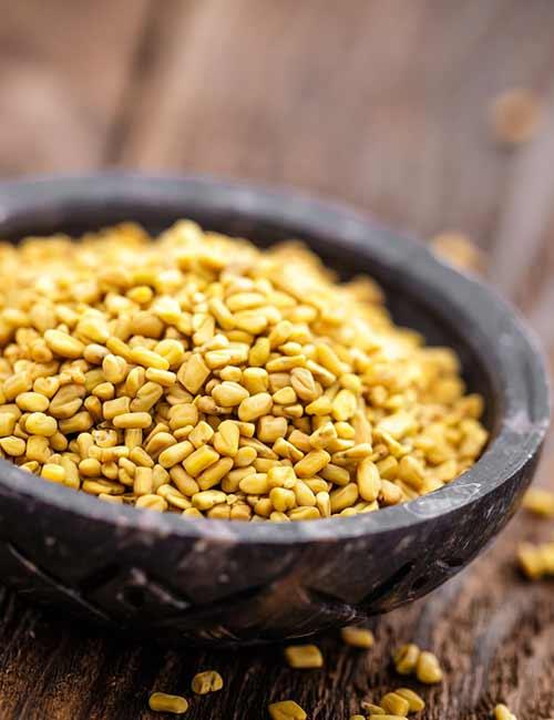 10. Fenugreek Seeds