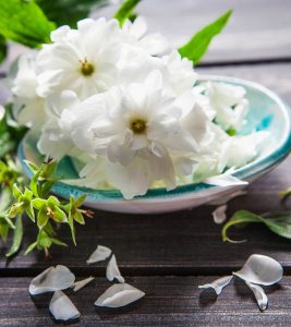 Amazing Benefits Of Arabian Jasmine For Skin, Hair, And Health