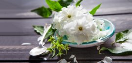 Amazing-Benefits-Of-Arabian-Jasmine-For-Skin,-Hair,-And-Health