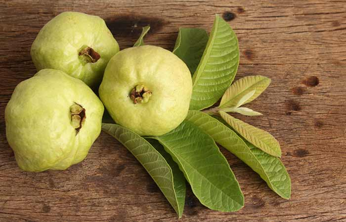 Skin Allergy Remedies - Guava Leaves