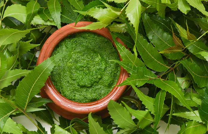 Skin Allergy Remedies - Neem