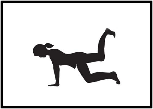 Donkey Kick Exercises - basic donkey kick