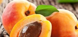 13 Best Benefits Of Apricot Seeds For Skin, Hair, And Health