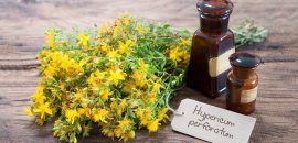 16-Amazing-Benefits-Of-St.-John's-Wort-For-Skin,-Hair-And-Health