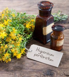 St. John's Wort: 10 Potential Health Benefits, Dosage, And Side Effects