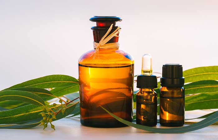 b. Eucalyptus Oil