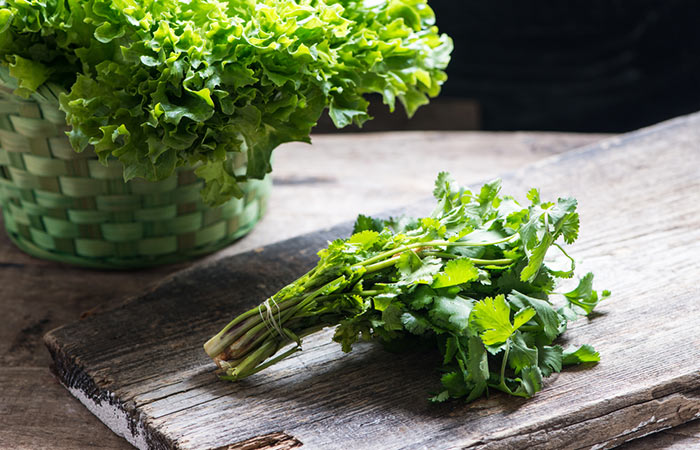 17.-Coriander-Leaves-For-Moles