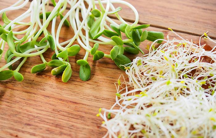 Alfalfa-For-Bursitis