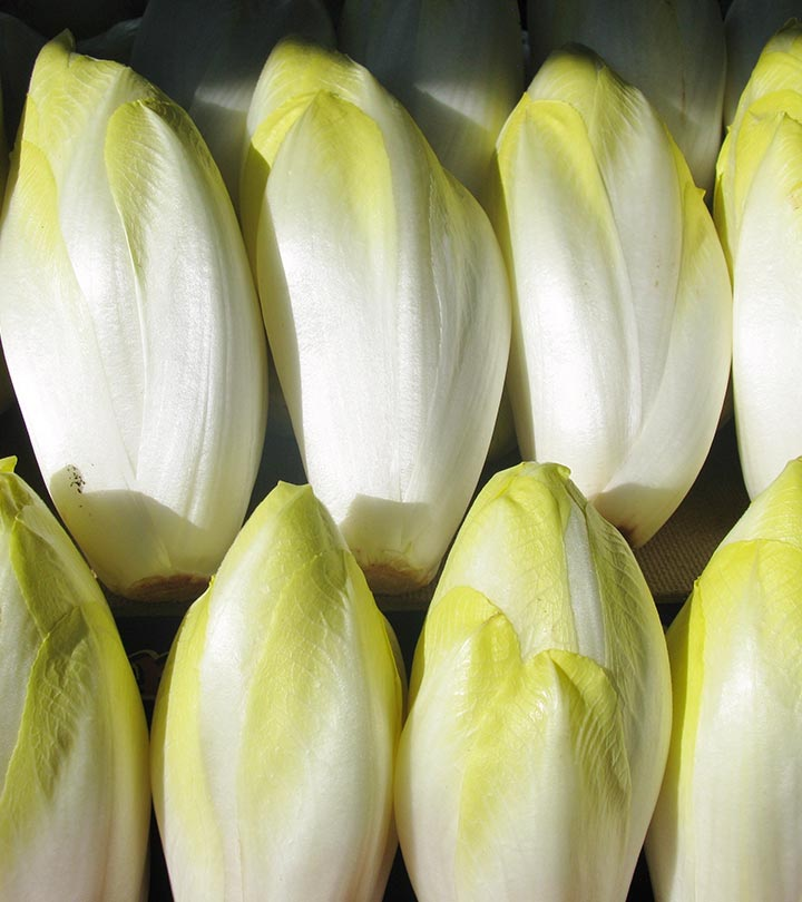 15 Amazing Benefits Of Endive (Kasni) For Skin, Hair and Health