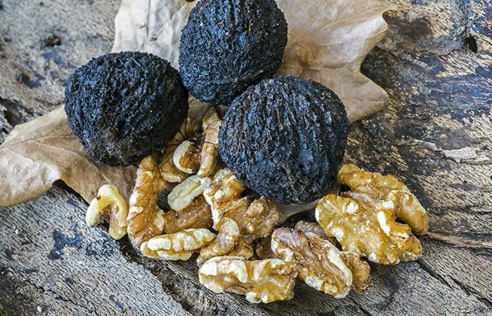 Black-Walnut-Tincture-For-Cavities