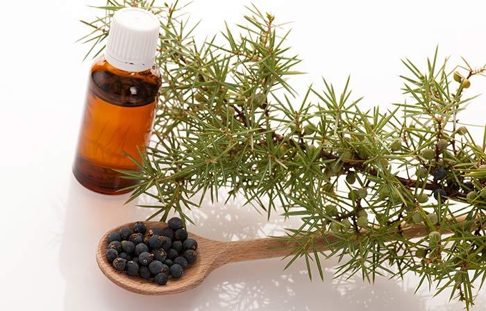 1. Essential Oils For Cellulite